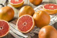 Surowi Organicznie Rubinowi Czerwoni Grapefruits obrazy stock
