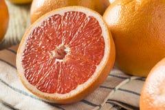 Surowi Organicznie Rubinowi Czerwoni Grapefruits zdjęcie royalty free