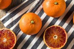 Surowi Organicznie Rubinowi tango Krwionośnej pomarańcze Clementines zdjęcia royalty free