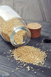 Surowi quinoa ziarna obraz stock