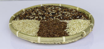 Surowi ryż od różnych rodzajów ryż, Zdjęcie Royalty Free