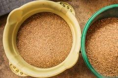 Surowi ryż w koszu Zdjęcia Stock