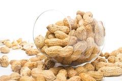 Surowi uskorupeni arachidy w szkle na białym tle, zbliżenie zdjęcia stock