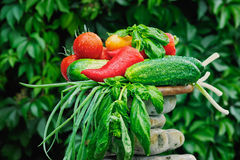 surowi warzywa zdjęcie stock