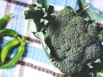 Surowi zieleni świezi brokuły jarzynowi na pielusze Obraz Royalty Free