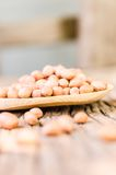 Surowy arachid na drewnianej łyżce obraz stock