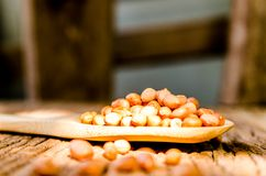 Surowy arachid na drewnianym tle zdjęcia royalty free