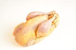 Organicznie surowy gwinei ptactwo fotografia stock