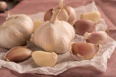 Surowy czosnek na białej tkance Fotografia Stock