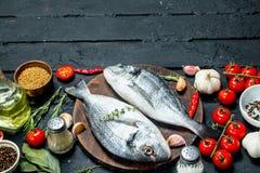 Surowy dennej ryby dorado z pikantność i warzywami fotografia stock