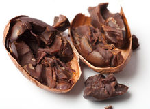 surowy fasoli kakao fotografia stock
