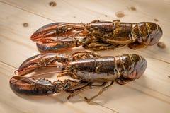 Surowy homar na drewnianym talerzu Fotografia Stock