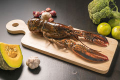 Surowy homar na drewnianym talerzu Obrazy Royalty Free