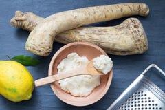 Surowy horseradish i pikantność abstrakta wciąż życie Zdjęcia Royalty Free