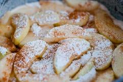surowy jabłczany kulebiak Zdjęcie Stock
