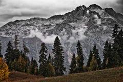 Surowy kamienny skalisty halny szczyt i ponura jodła, obrazy stock