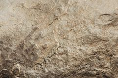 Surowy kamienny tekstury zakończenie up Zdjęcie Stock