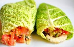 Surowy karmowej diety pojęcie z kapuścianymi opakunkami Zdjęcia Royalty Free