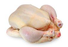 surowy kurczak Zdjęcia Royalty Free