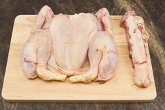 surowy kurczak Obrazy Royalty Free
