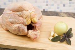 surowy kurczak zdjęcie royalty free
