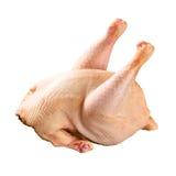 surowy kurczak Zdjęcie Stock