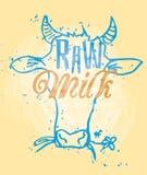 Surowy mleko Zdjęcie Royalty Free