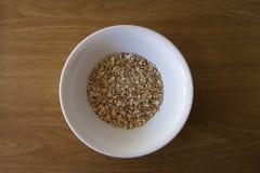 Surowy Oatmeal Fotografia Stock