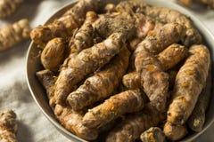 Surowy Organicznie Pomarańczowy Turmeric korzeń fotografia royalty free
