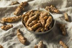 Surowy Organicznie Pomarańczowy Turmeric korzeń zdjęcie stock
