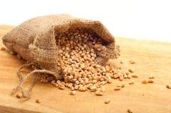 Surowy perełkowy jęczmień w brezentowej torbie Zdjęcie Royalty Free