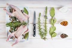 Surowy poussin z ziele i pikantność Fotografia Stock