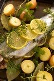 Surowy pstrąg i warzywa Obrazy Stock
