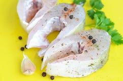 Surowy rybi polędwicowy z czosnkiem i pikantność Obraz Royalty Free