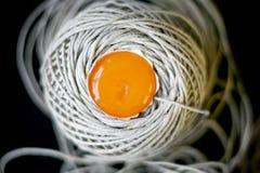 Surowy yolk od jajka w skein przędza fotografia stock
