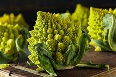 Surowy Zielony Organicznie Romanesco Obrazy Royalty Free