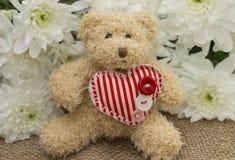 Surpresa agradável à menina no dia de Valentim Foto de Stock