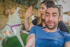 Surpresa brincalhão e entusiasmado e interrupção do cão do terrier de russell do jaque aos pares novos que estão tentando ser fot fotografia de stock