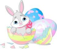 Surpresa de Easter Fotos de Stock