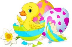 Surpresa de Easter Imagens de Stock Royalty Free