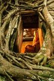 Surpresa tailandesa Fotografia de Stock Royalty Free