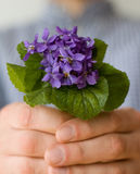 Surprise. Man give her bouquet of violets. Background out of focus Stock Images