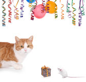 Surprise. Cat and mouse having a party on a white backgroun Stock Photo