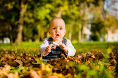 Surprise - baby sitting in fallen leaves Royalty Free Stock Photos