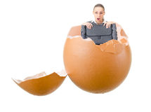 Surprise in broken egg shell Stock Image