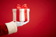Surprise for Christmas Royalty Free Stock Images