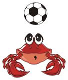 Surprise crab and sport. Red surprise crab play to soccer royalty free illustration