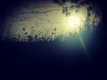 Surprise de lever de soleil photo libre de droits