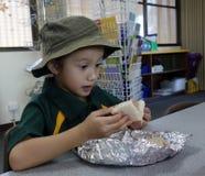 Surprise de sandwich. Image libre de droits