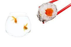 Surprise de sushi Images libres de droits
